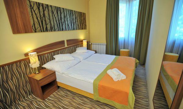 Park Hotel - Gyula - Franciaágyas szoba