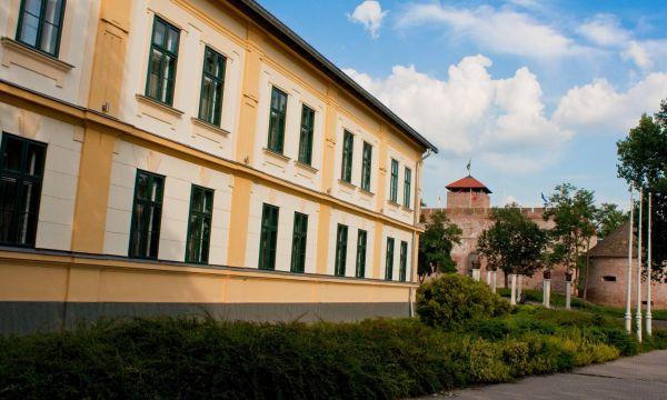Hotel Elizabeth - Gyula - 3