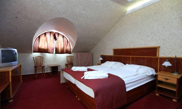 Laroba Wellness &Tréning Hotel - Alsóörs - 10