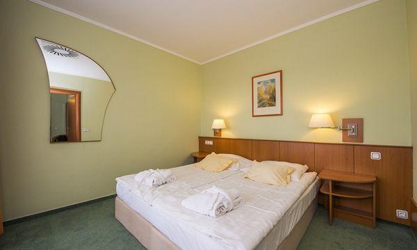 Aquarell Hotel - Cegléd - 20