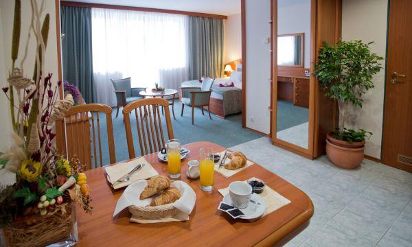 Hotel Palace - Hévíz - 5