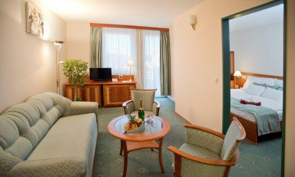 Hotel Palace - Hévíz - 9