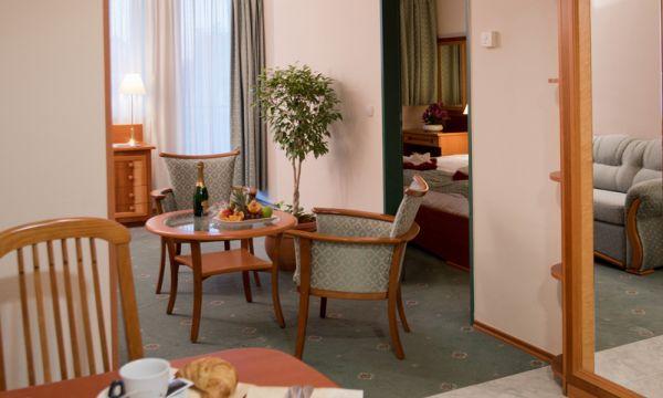 Hotel Palace - Hévíz - 8