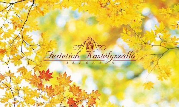 Festetich Kastélyszálló és Zsuzsanna Hotel - Szeleste - 28