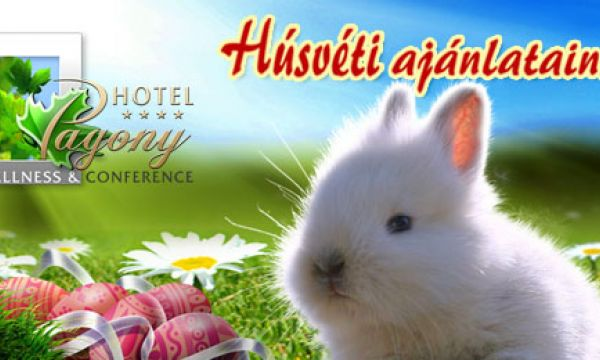 Hotel Pagony - Nyíregyháza - 38