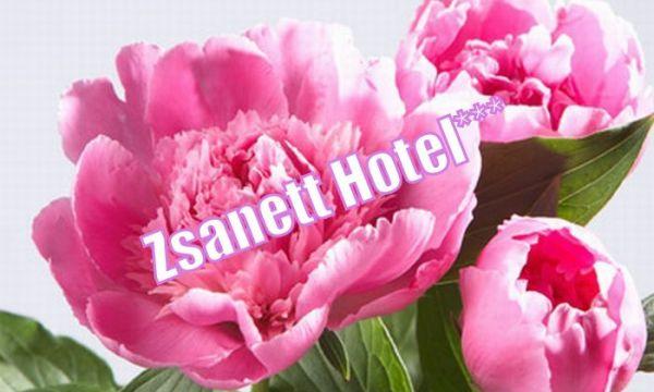 Zsanett Hotel - Balatonkeresztúr - 44