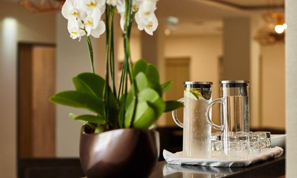 Thermal Hotel Balance - Lenti - 14