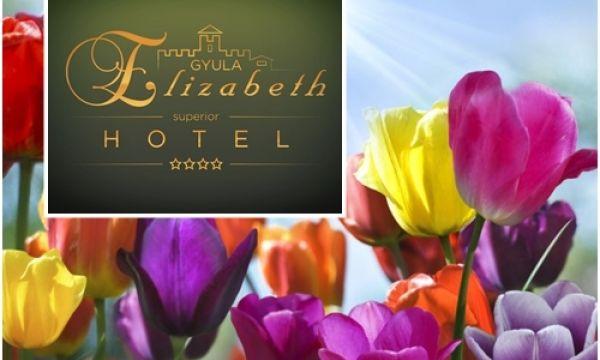 Hotel Elizabeth - Gyula - 50