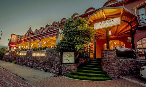 Laroba Wellness Hotel - Alsóörs - A hotel