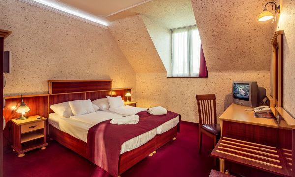 Laroba Wellness Hotel - Alsóörs - Standard Szoba