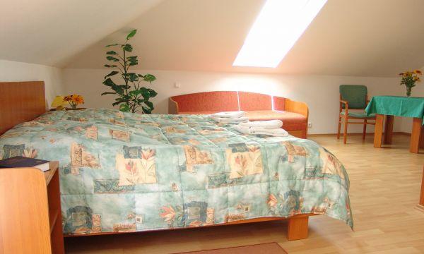 Hotel Forrás - Zalakaros - 10