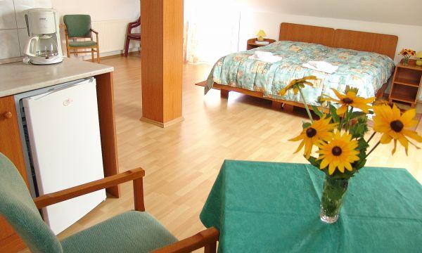 Hotel Forrás - Zalakaros - 11