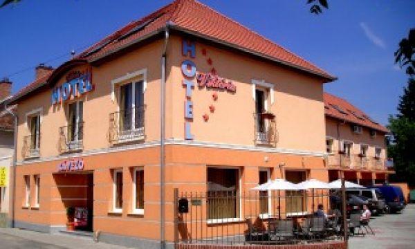 Hotel Viktória - Sárvár - A hotel