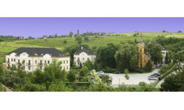 Hotel Villa Völgy - Eger - A szálloda környezete