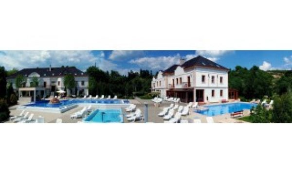 Hotel Villa Völgy - Eger - Kültéri medence
