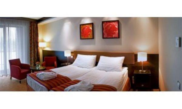 Hotel Pagony - Nyíregyháza - 5