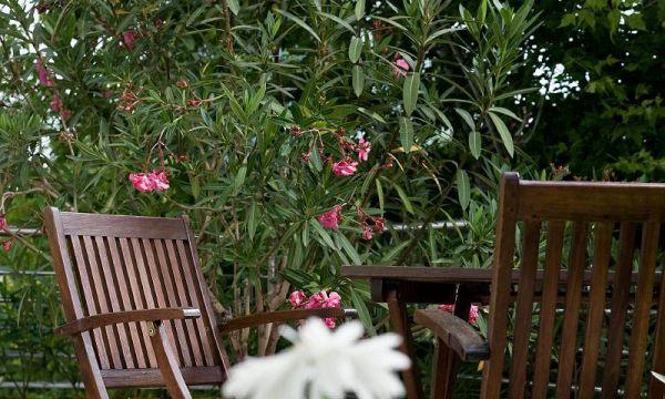 Jagelló Hotel - Budapest - Hotel Jagello garden