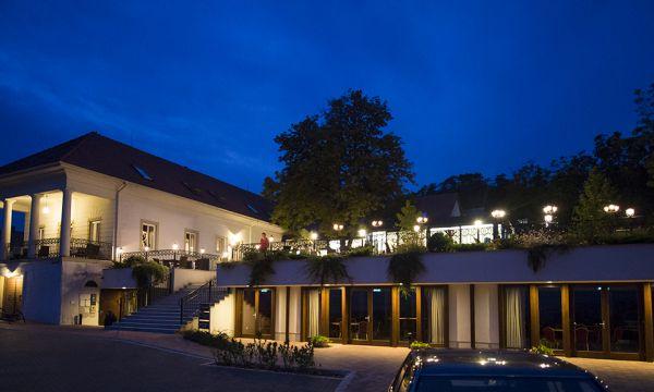 Zenit Hotel Balaton - Vonyarcvashegy - Étterem este