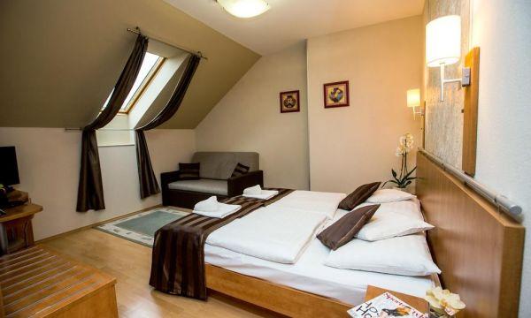 Hotel Villa Völgy - Eger - Superior tetőtéri szoba
