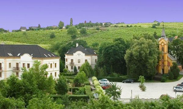 Hotel Villa Völgy - Eger - 35