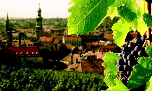 Hotel Szieszta - Sopron - 18