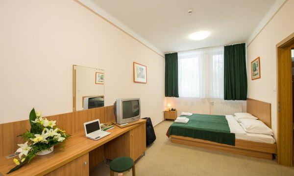 Alföld Gyöngye Hotel - Gyopárosfürdő - 14
