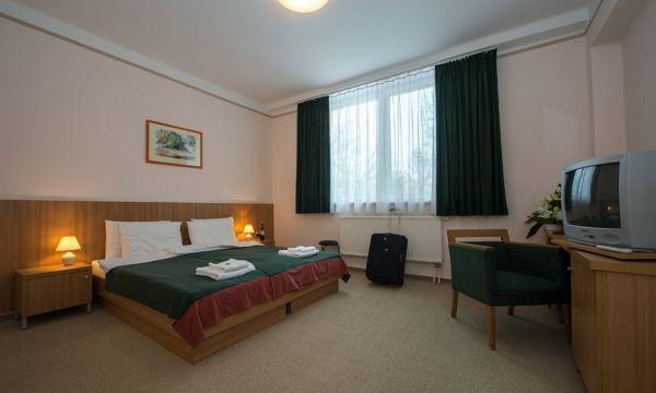 Alföld Gyöngye Hotel - Gyopárosfürdő - 9