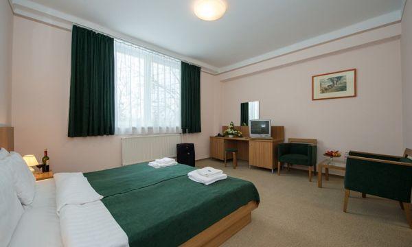 Alföld Gyöngye Hotel - Gyopárosfürdő - 7