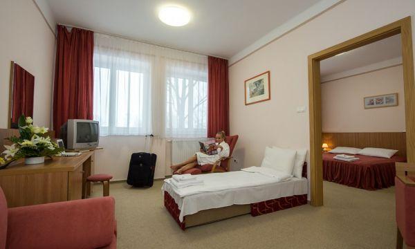 Alföld Gyöngye Hotel - Gyopárosfürdő - 21