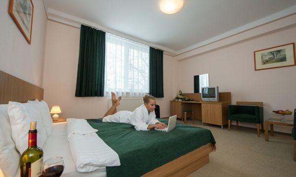 Alföld Gyöngye Hotel - Gyopárosfürdő - 11