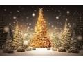 Hotel Silverine Lake Resort - Karácsony