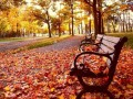 Thermál Park  szállás ajánlata